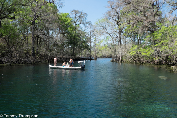 When The Weather Is Cool Our Spring Waters Are Quot Warmish Quot Visit Natural North Florida
