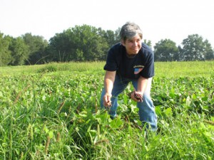 Tuten's U-Pick Farms, Madison, GA