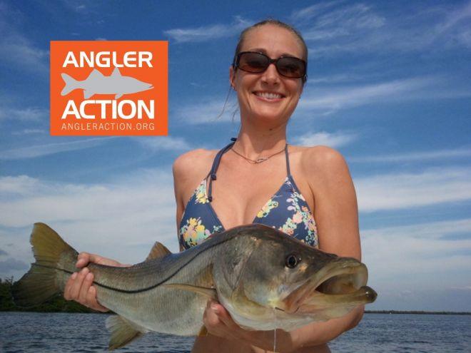 Agler Action