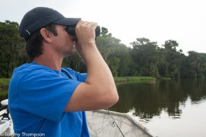 Keen eyes and a pair of good binoculars are helpful when spotting gators