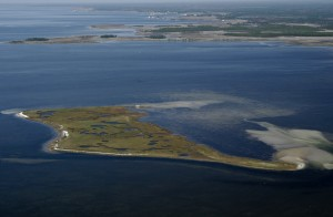 Aerial view of Taylor County's Big Grass Island