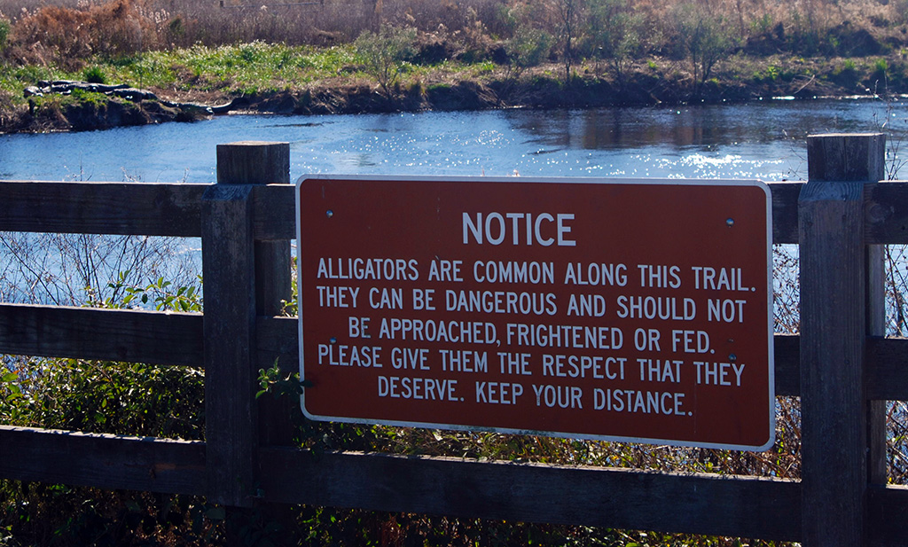 Alligator warning sign at La Chua