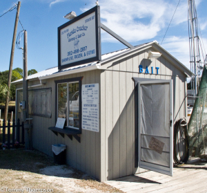 "You can't miss Florida Cracker Shrimp and Bait Company. It's alongside the canal on CR351 in ""downtown"" Horseshoe Beach, FL"