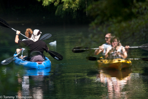Paddling the spring run at Gilchrist County's Manatee Springs State Park