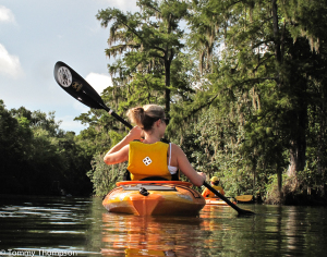 The Wakulla River, near St. Marks, is scenic, clear and rustic.