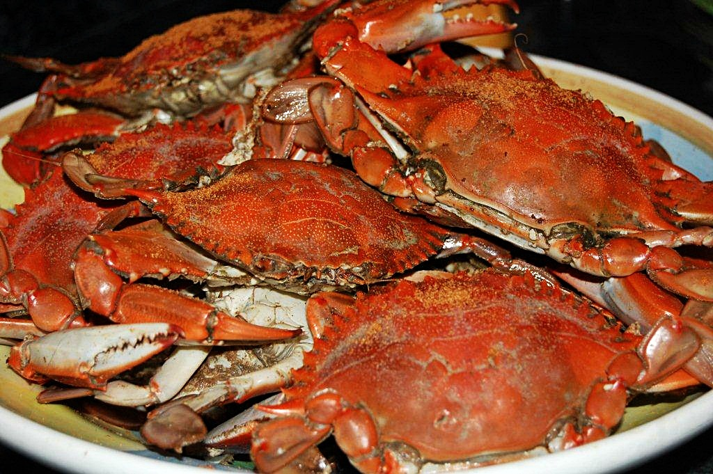 Steamed Crab Natural north florida dining essentials: how to eat a ...