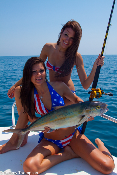 Greater amberjack natural north florida 39 s reef donkeys for What saltwater fish are in season now