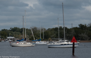 There's good anchorage just upstream of Good Times Marina and Sea Hag Marina at Steinhatchee