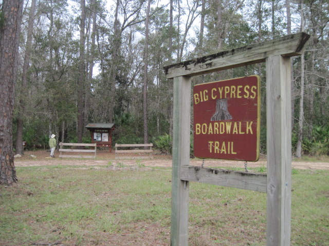 Big Cypress Trailhead in Goethe State Forest