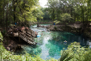 Madison Blue Springs, Madison County, FL