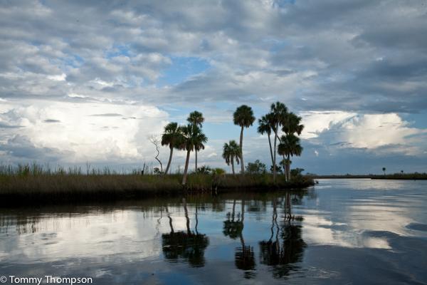 Florida S Big Bend Coastal Creeks Offer Excellent