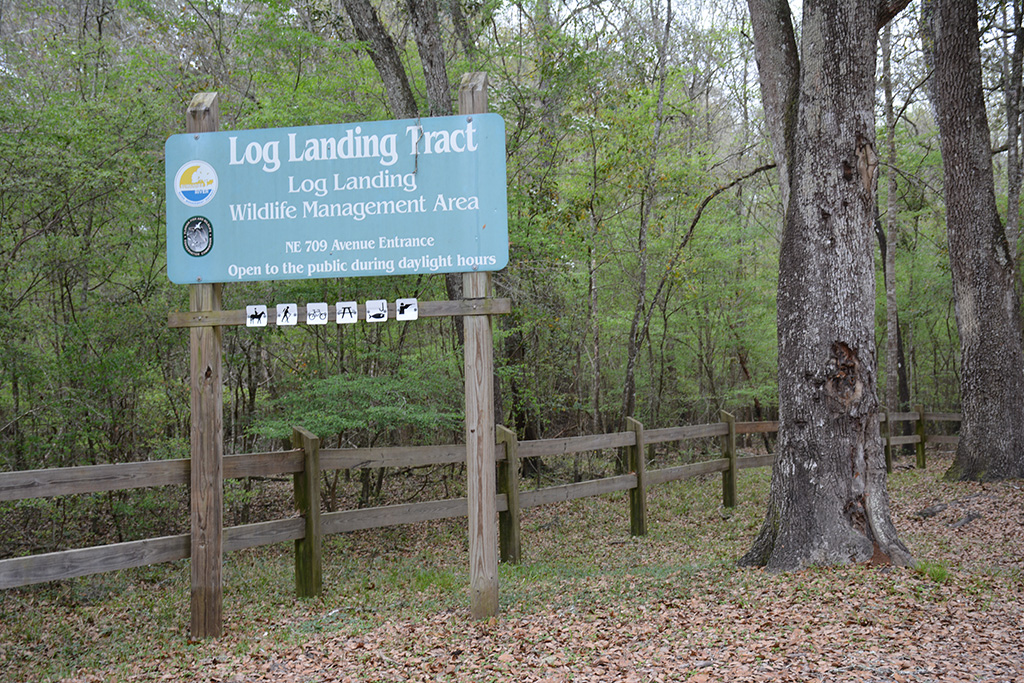 The trailhead sign assured us we'd found Log Landing