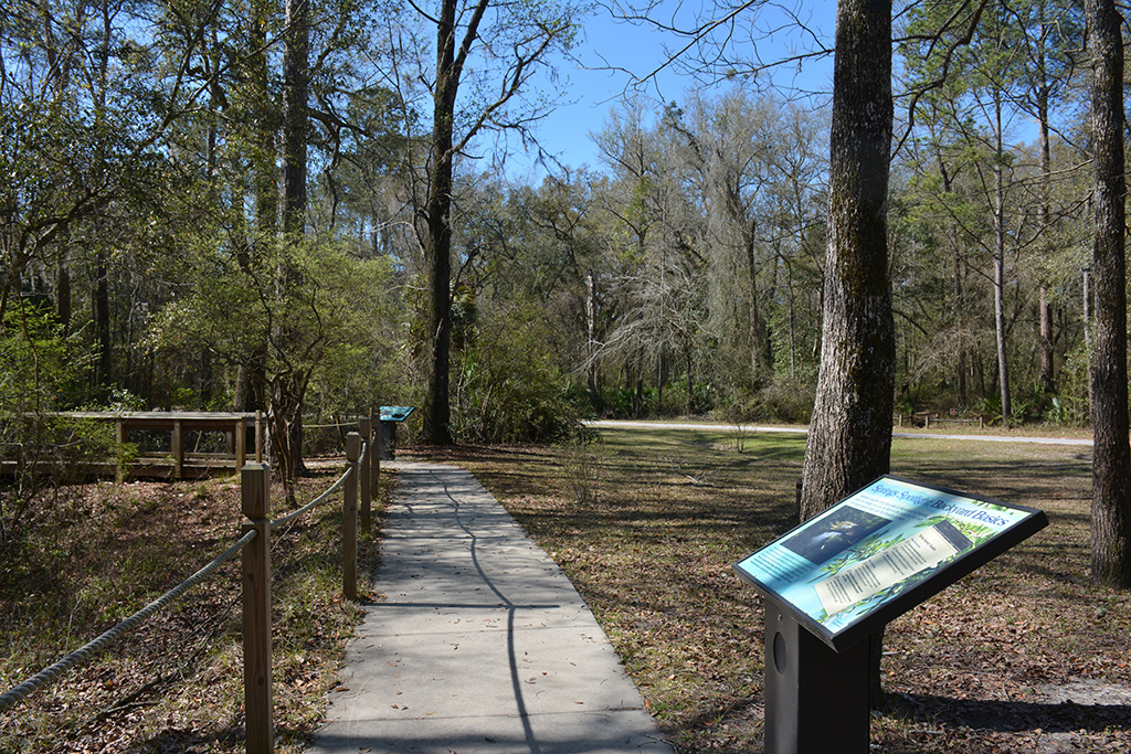 Path to the springs, with interpretive markers
