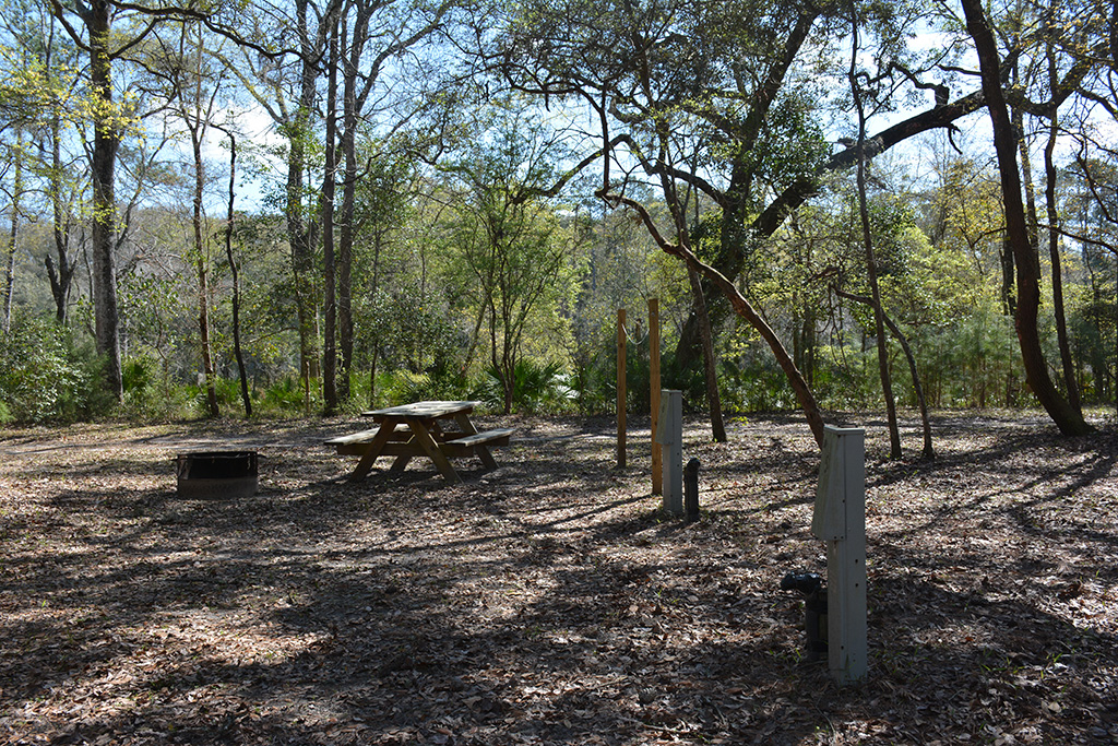 Campground along the Suwannee River