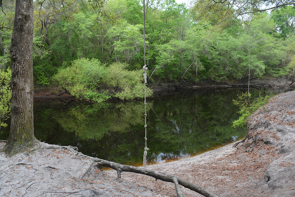 Rope swing for old-fashioned fun