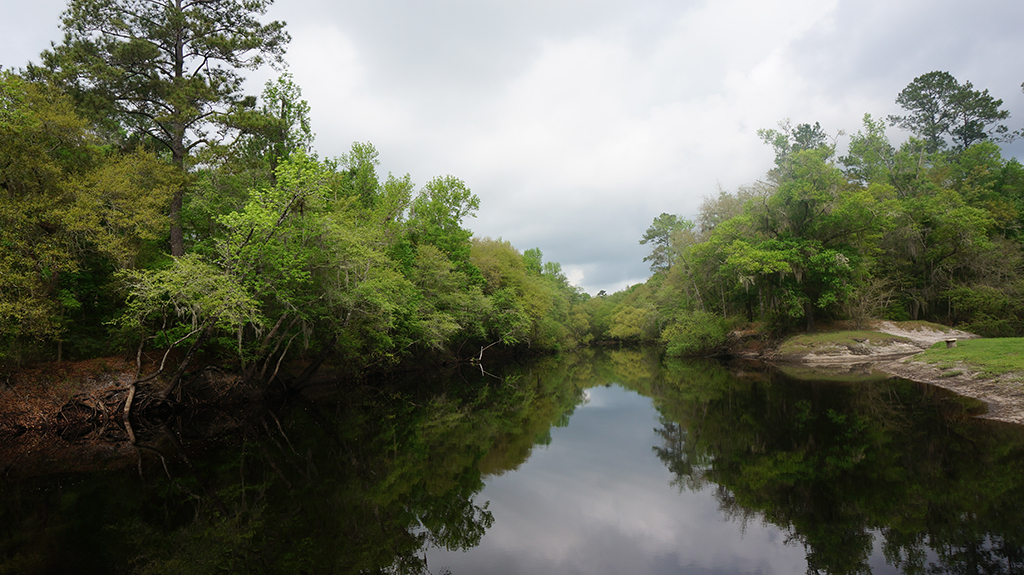 View from the fishing pier on the Santa Fe River