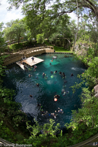 Blue Grotto, in Levy County. Florida, is more than just a small hole in the ground!