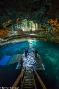Devil's Den is a a sunken cavern with a 60-plus foot ceiling.  Below, cave divers can explore one of Florida's most interesting springs.