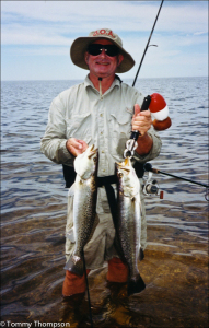 A couple of nice trout, caught while wading oyster bars south of Horseshoe Beach, In Dixie County