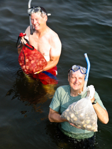 Scalloping at low tide is fun for everyone!