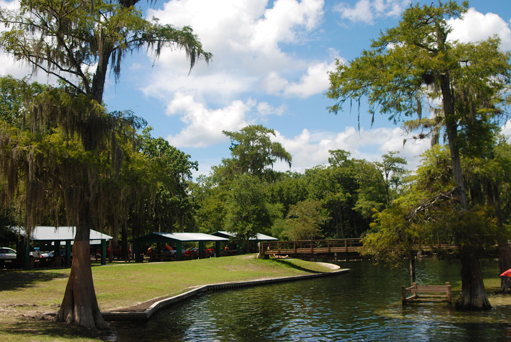 Swimming and picnic areas at Hart Springs Park