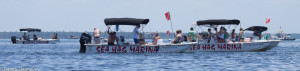 Renting a boat for a scalloping trip is a great option for visitors to the Natural North Florida coast.