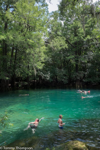 Manatee Springs State Park is about 8 miles from Bett's Big T Restaurant in Chiefland, FL