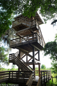 Climb the 50-foot observation tower near the Visitors' Center for a great view of the prairie.