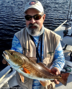 Artificial lures (topwater plugs, soft plastics and noisy slow-sinking baits) work best for early AM Big Bend redfish.