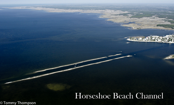 Horseshoe Beach Fl >> Where S The Beach At Horseshoe Beach Visit Natural North Florida