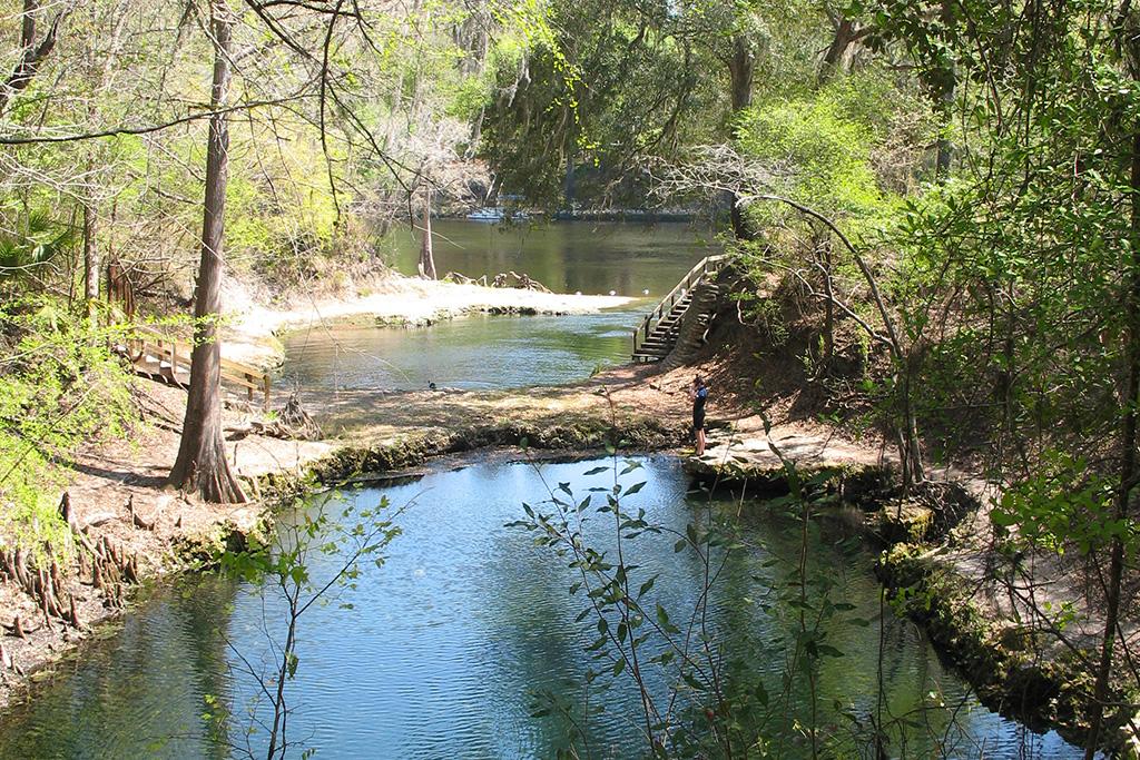 Lafayette Blue Springs State Park Vnnf