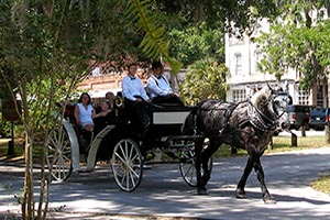 Don't Miss The 41st Annual Micanopy Fall Festival, October 31 and November 1, 2015
