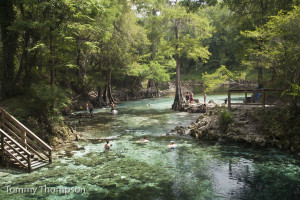Madison Blue Springs pumps constant 72-degree water into the Withlacoochee River, northeast of Madison, FL