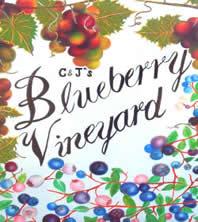 Blueberry Vineyard