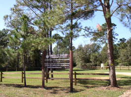Santa Fe Swamp Wildlife and Environmental Area