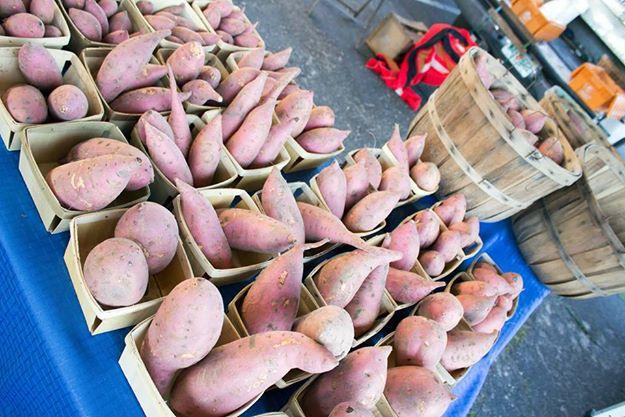 Alachua County Farmers Market