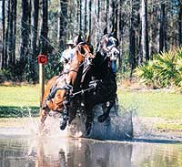 Black Prong Equestrian Center