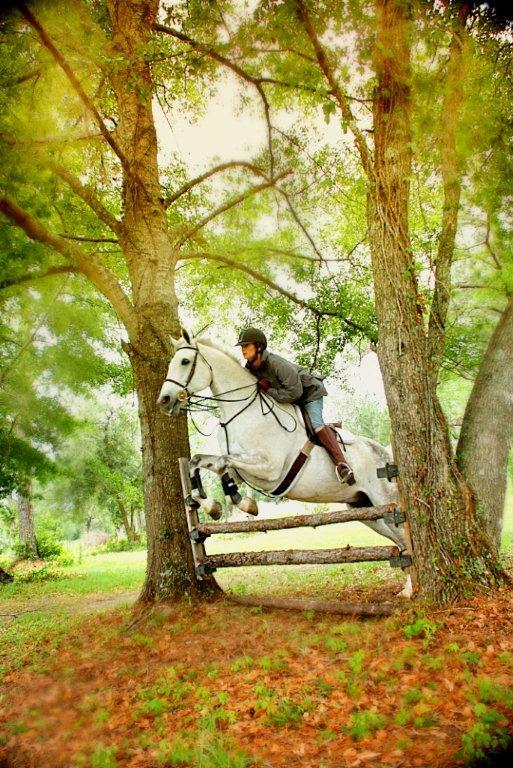 Cavallo Farms Horse Farm and Equestrian Center