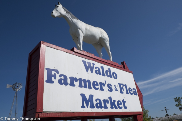 Located just north of Waldo, Florida on US301 the Waldo Farmer's and Flea Market is a fun place to spend a weekend day!