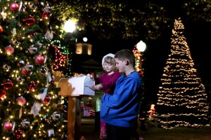Olustee Park in downtown Lake City comes alive with the sights and sounds of the holiday season. Tour the lighted displays, enjoy live entertainment and of course what would it be without Santa Claus himself. Bring the family and enjoy a night of holiday festivities!