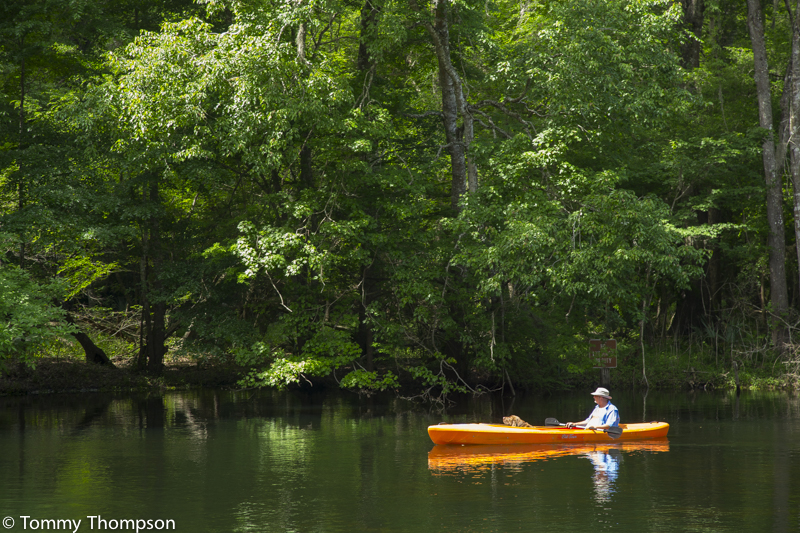 Poe Springs, on the Santa Fe River, in Alachua County