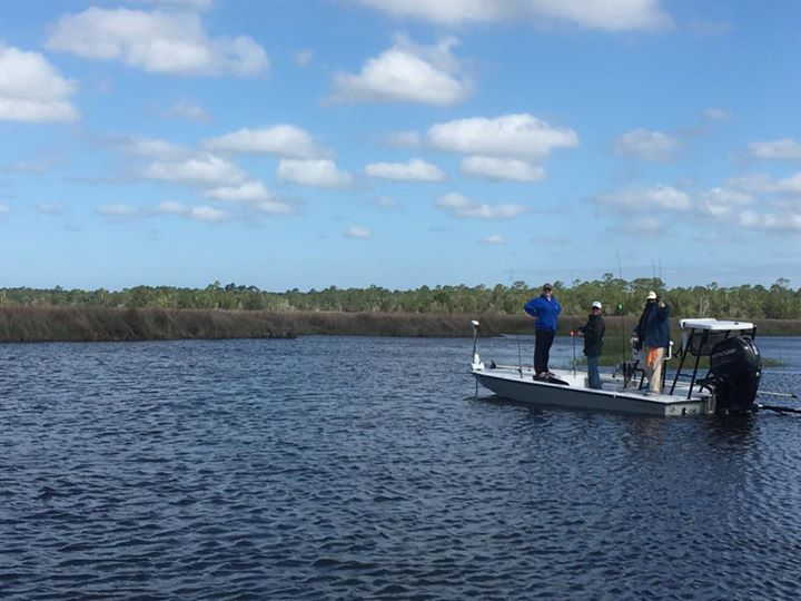 Too windy to fish the gulf head up a big bend coastal for Fish creek florida