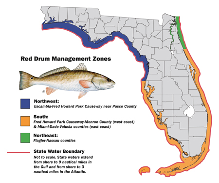 red drum management zones map