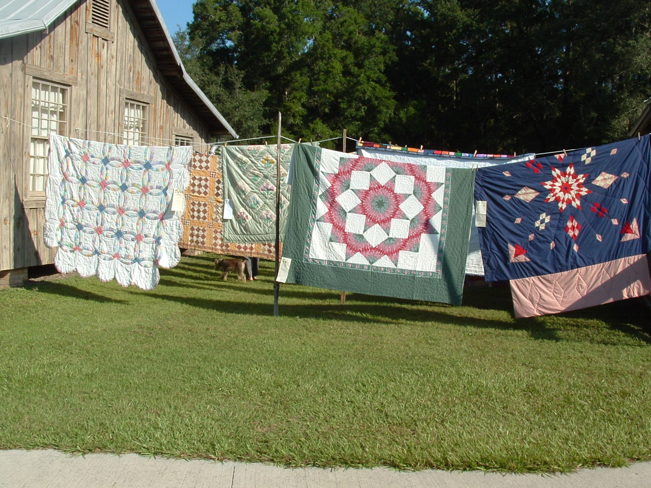 Quilt Day & Heritage Nursery Plant Sale