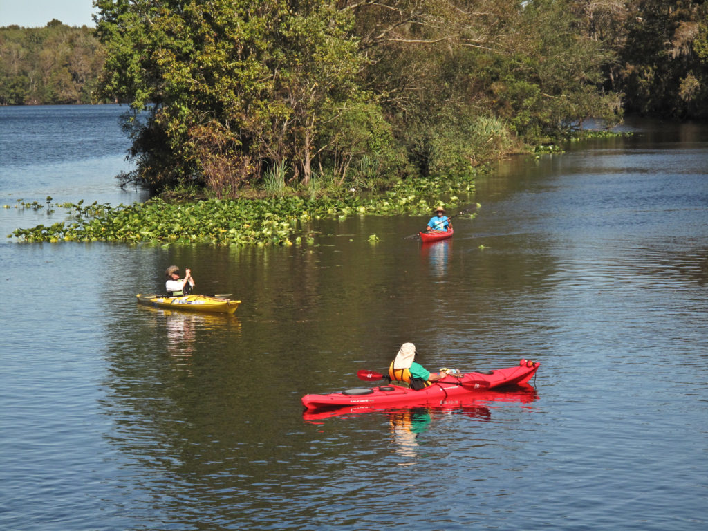 Kayaking the Suwannee-Levy County (4)