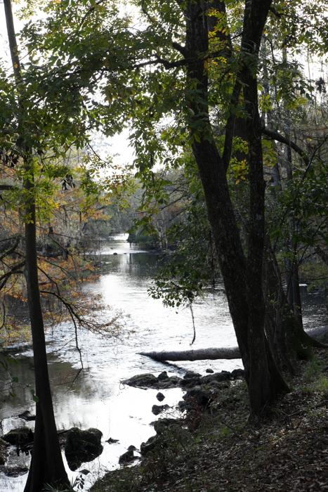 Florida's Ichetucknee - O'leno State Trail