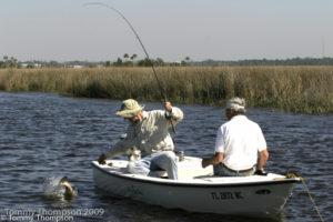 trout-4