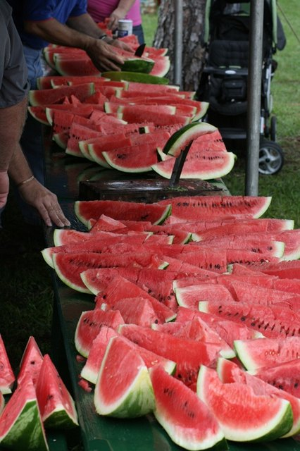 Chiefland Watermelon Festival