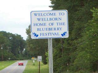 23rd Annual Wellborn Blueberry Festival