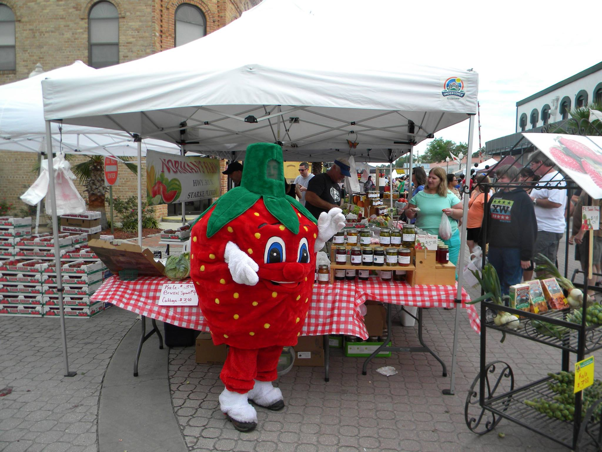 Bradford County Strawberry Festival, April 8 and 9, 2017, Starke, FL